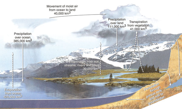 Natural history natural cycles figure 229 hydrologic cycle source author cunningham w et al 2007 publisher mcgraw hill ny with permission of the mcgraw hill companies ccuart Choice Image