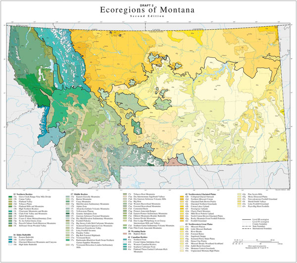 Natural History-Biodiversity